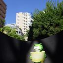 蛙(かわず)の見る空
