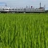 秩父鉄道SLパレオエクスプレスの撮影