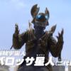 【感想】海賊戦隊ゴーカイジャー【ウルトラマンZ】