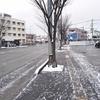 今日は福岡も雪です。
