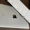 iPad買おうか悩んでいる?そんな人にはiPad mini 5をオススメしたい!3ヶ月の使用感をレビュー