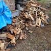 薪の片付けから 昼休みに積む Storing firewood on the shelf
