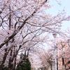 ≪横浜18区散歩制覇/栄区編≫2.本郷台から東へ