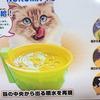 猫の冬の飲み水対策に!【ヌルマ~ユ】冷たい水よりぬるい水!