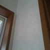 【洗面所】壁にもホコリ。