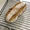小麦胚芽プルーンパン
