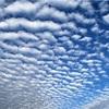 Milky king10月の空模様です。