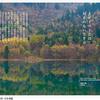 『タオイストとは、対立のない生き方』 老子の言葉が散りばめられた写真集 『Taoist Saying』シリーズ紹介