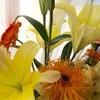 花づくしの3月