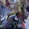 PS4ゴッドオブウォー攻略 ヴァルキュリアの女王 シグルーン戦