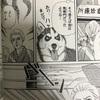 漫画「動物のお医者さん」は子どもにもおすすめです!