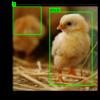 画像にmatplotlibでバウンディングボックスとラベルを追加する