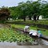 真人公園の池(秋田県横手)