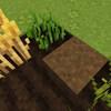 森のスローライフ編-Vol.4「見事な豆腐ハウスと小麦畑」
