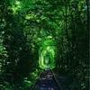 【ウクライナ】リヴネから「愛のトンネル」への行き方(バス)を詳しく案内!バス乗り場、帰りのバスなど