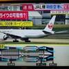 【速報】バードストライク発生!【JAL006便】が緊急着陸か?!