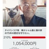 タイ猫保護活動、目標額達成!
