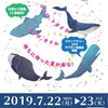 7月イベント情報♪