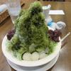 【奈良かき氷】 小西さくら通りの シャトードール さん