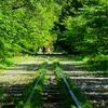 京都の新緑散歩~蹴上インクライン・南禅寺水閣路は近いからセットで行くといいよ!~