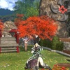 紅葉と天然とサブリガ祭り。