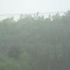 沖縄本島の雨はいつまで続く~