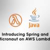 AWS LambdaにおけるJava実装時のSpringとMicronautの比較