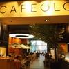 【韓国カフェ】ソウル駅近くのカフェOLORに行ってみた。
