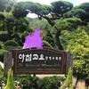 アチムコヨ樹木園
