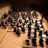 吹奏楽部にいたコントラバス奏者から見て、アマオケに入団して嬉しかったこと