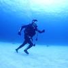 ♪砂地に現れた海底人間♪〜沖縄那覇慶良間少人数ダイビングショップ〜