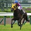 タコイチの【勝負レース回顧】垂水S!