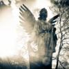 天使の階級