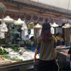田中鮮魚店(高知県高岡郡中土佐町久礼)メジカの新子