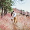結婚でお悩みなら、パートナーエージェントを調べてみてください!非常におすすめできるプランがあります!