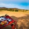 アフリカを見渡す 『サバンナの中で朝食』 ケニア サンブル国立保護区
