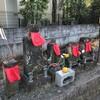 「福島県民がん増える可能性低い」と国連科学委が報告