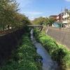 三沢川 人の手で流れが変化し続けた川