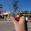 【即レポ】ベルギービールフェスタは大盛り上がり!新鮮なラム肉で飲むトラピストビールは至福の時間でした。