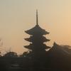 今日の京都東寺の五重塔(お花見) その3