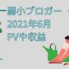 【2021年6月のブログ運営報告!】弱小ブロガーの収益・記事数・PVどれくらいなの?