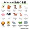【スペイン語】動物の名前まとめ1・2