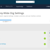 SFDC:Company-Wide Org Settings