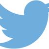 PythonでTwitter APIにアクセスしタイムラインをキーワードで検索・取得 〜 認証エラーやAPIについて