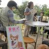 Arca dog 運動会2012<マナーチャレンジ編>
