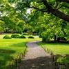 東京・新宿 - 新緑の新宿御苑 こどもの日無料開苑