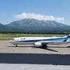 羽田→札幌(新千歳)→利尻島 ANA2フライトで6,000UAマイル(21日以前の予約で5,500マイル)
