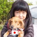 asa6fuji's blog