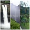 【滞在が短い方向け】レンタカーでハワイ島三大滝を巡る1日ツアー、いかがですか?