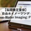 【脳画像定量値】自由水イメージング(Free-Water Imaging: FWI)